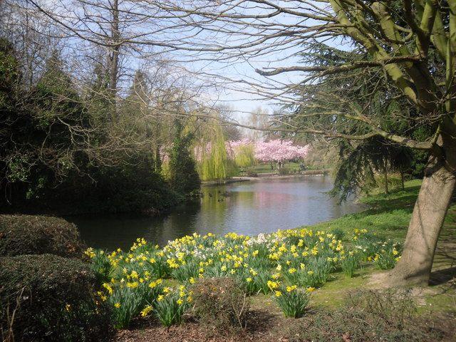 Ravenscourt Park Area Guide